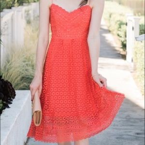 NWT J.Crew Orange Daisy Lace Midi Dress.